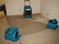Calgary Water Damage Restoration